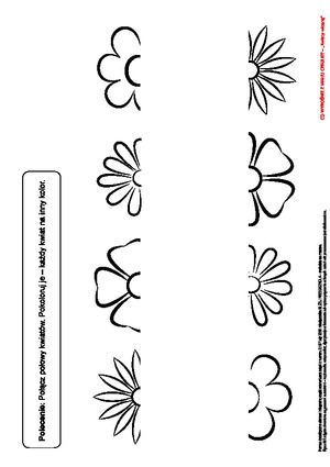 Kwiaty Wiosna Pd Pomoce Dydaktyczne Miesiecznik Blizej