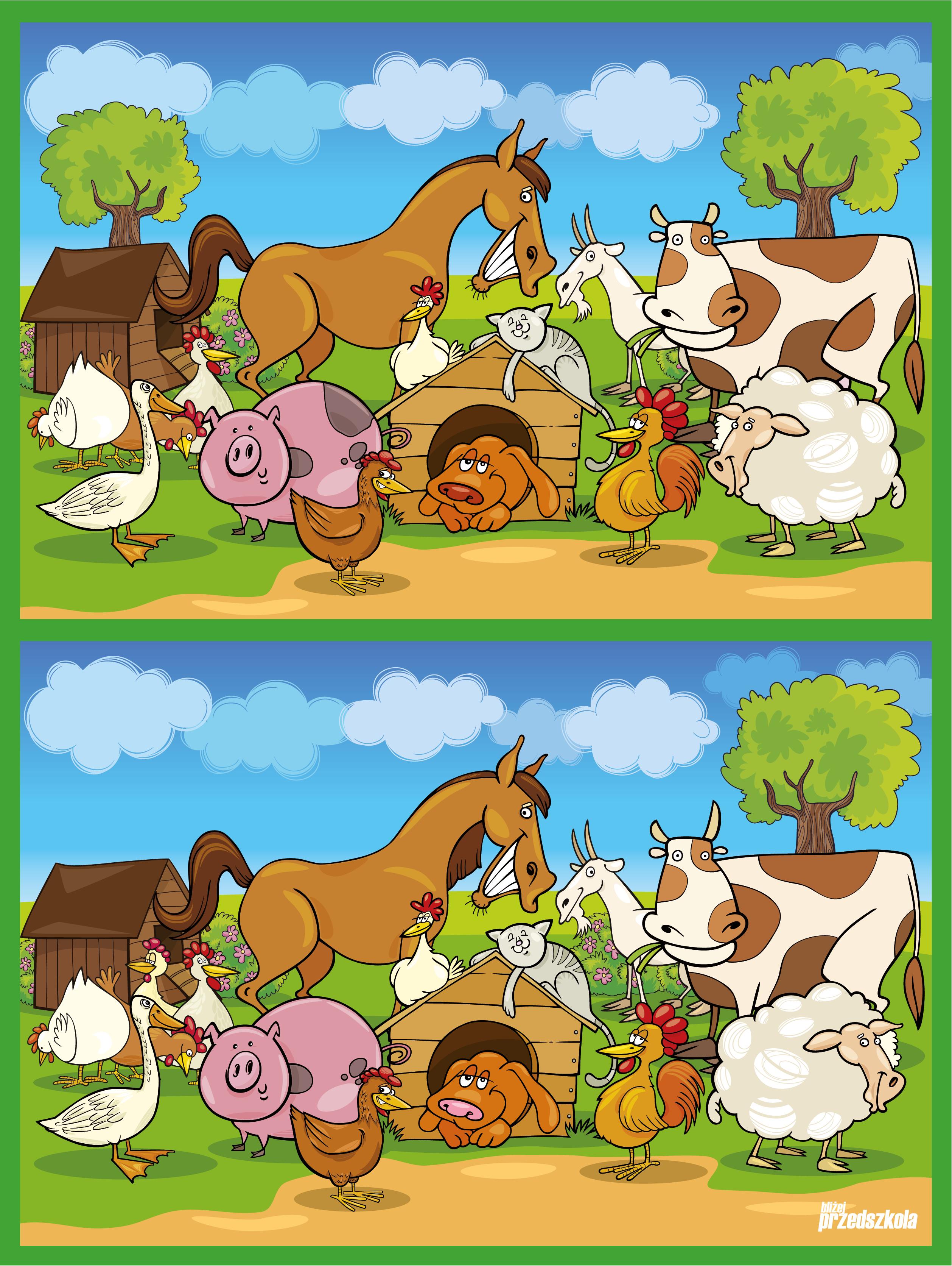 Plakat - Zwierzęta z wiejskiego podwórka - Scenariusze zajęć i artykuły -  Miesięcznik - BLIŻEJ PRZEDSZKOLA