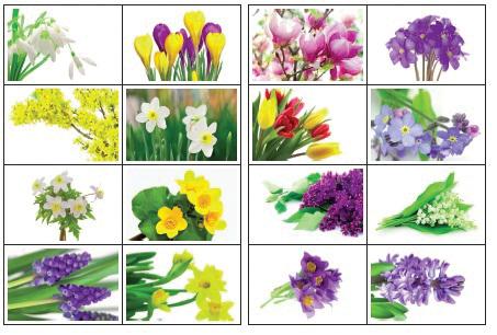 Plakat Wiosenne Kwiaty Scenariusze Zajęć I Artykuły
